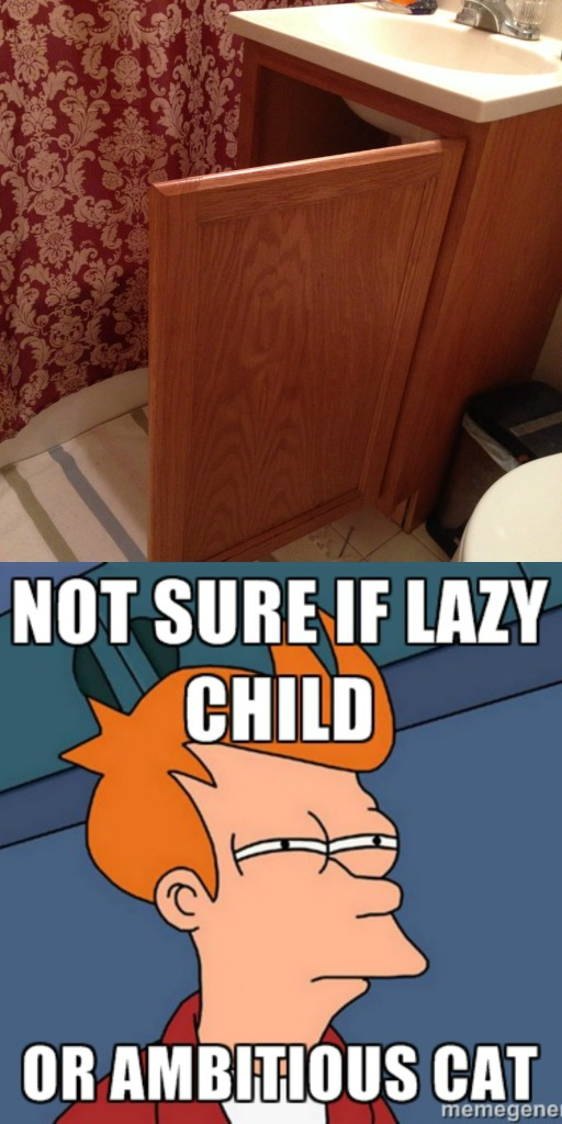 Lazy Child with Fry